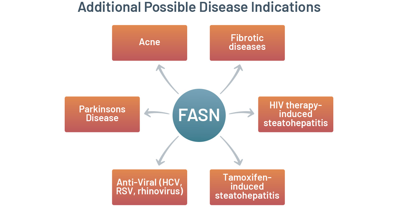 FASNHIV therapy-induced steatohepatitis Tamoxifen-induced steatohepatitisAnti-Viral (HCV, RSV, rhinovirus)Parkinsons DiseaseFibrotic diseasesAcneFASNAdditional Possible Disease Indications
